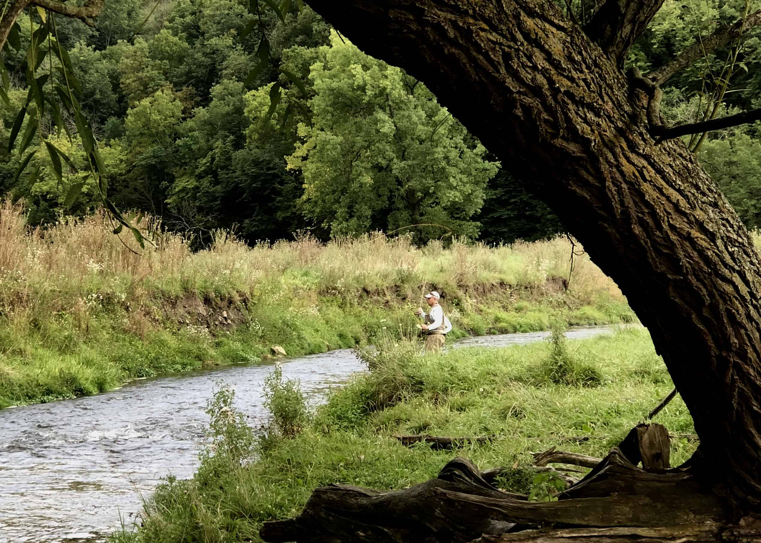 Guided Fly Fishing Decorah Iowa