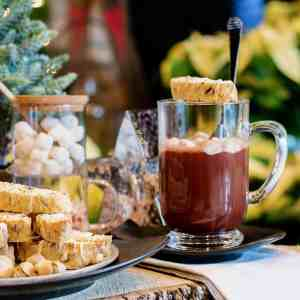 Cozy Hot Cocoa Mug and Cookies