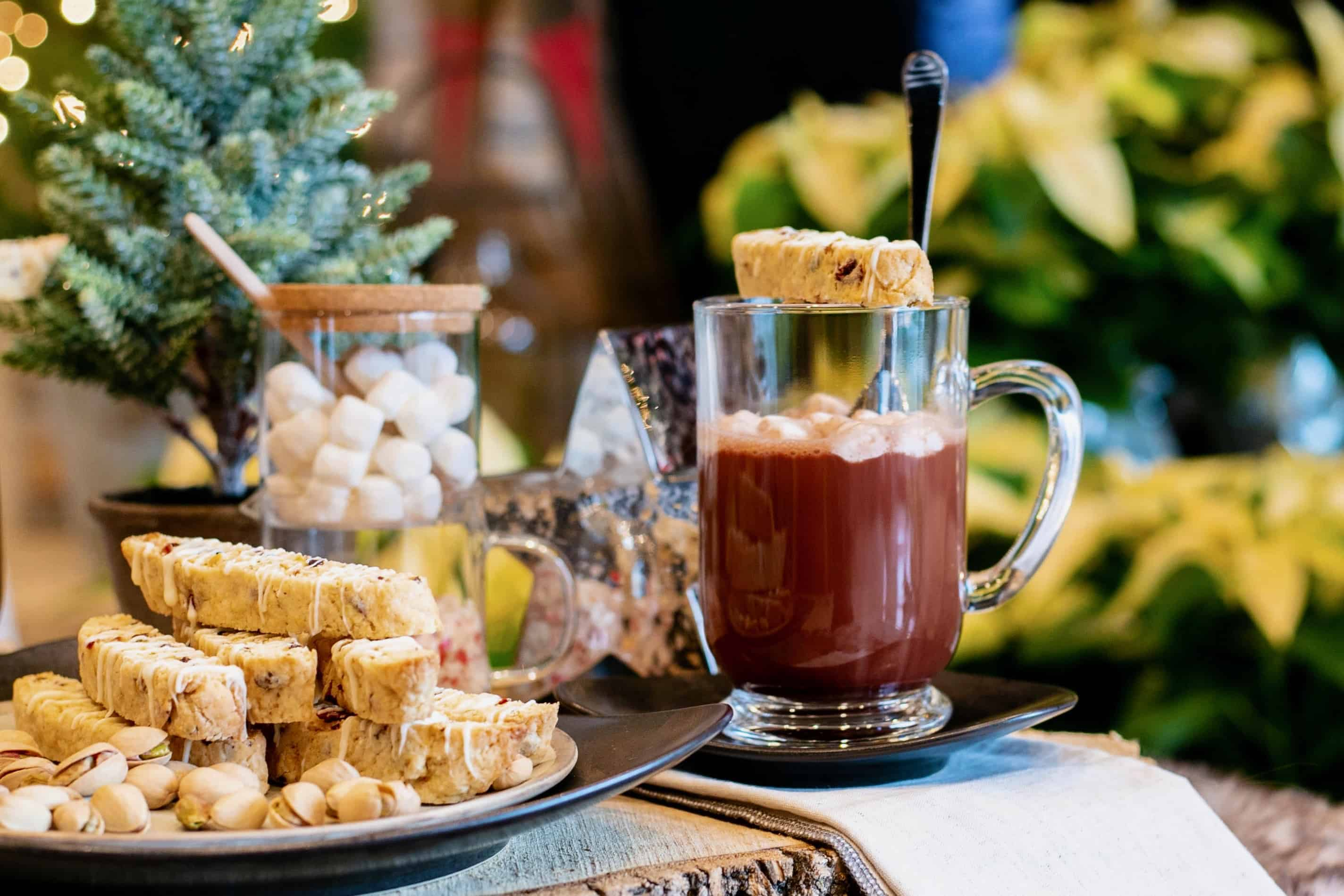 Cozy Hot Cocoa Mug and Cookies