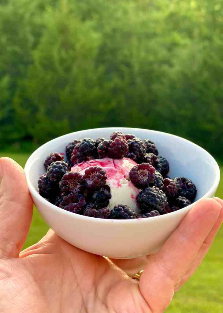 Fresh Wild Raspberries on Ice Cream